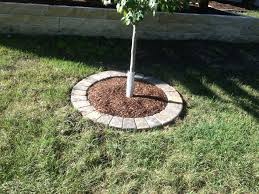 a simple tree ring with circle pavers stony creek landscapes