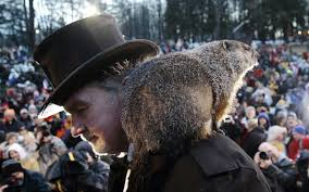 groundhog day is an adorable reminder that science is essential