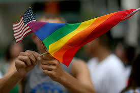 Straight Pride Flag Wordpress Wins Against U0027straight Pride U0027 Group In Copyright
