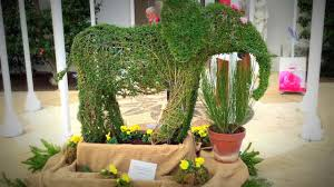 Elephant Topiary Beautiful Decorative Elephant Topiary Display For Attractive