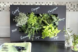 which herbs to grow indoors and which ones not to garden therapy
