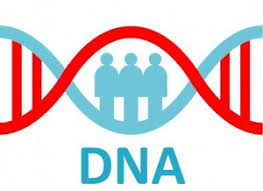 how to get started with using dna for family history genealogy gems