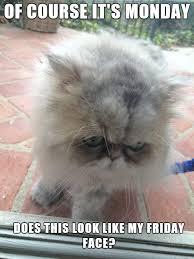 Monday Meme Images - monday memes home facebook
