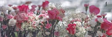 wedding flowers quiz quiz find out which colours suit your wedding pink book sa