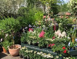 serre jardin d hiver clifton nurseries brunch stylé dans un jardin d u0027hiver
