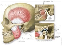 diagnosis and treatment of temporomandibular disorders american