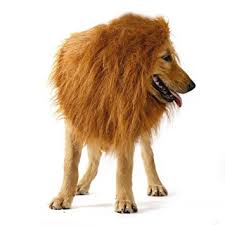 Big Dog Halloween Costume Lifeeling Lion Mane Costume Big Dog Lion Mane Wig Large Lion Wig