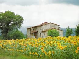 The Tuscan House Best 20 Under The Tuscan Sun Ideas On Pinterest Sun Movies