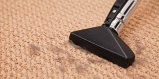 Harding Carpets by Vacuuming Does Not Count As Carpet Cleaning Seriously Huffpost