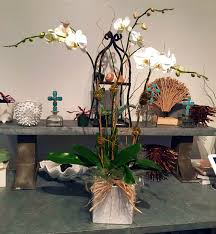 arrangements tropical flower orchid specialist palm beach