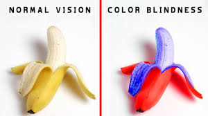 Most Common Colour Blindness How People With Different Types Of Color Blindness See The World