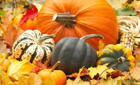 free pumpkin desktop wallpaper home south frontenac