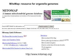 introduction to genomics and the tree of life chapter ppt download