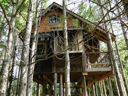 Real Treehouse Sybarite Tree House Lodging Best House Design