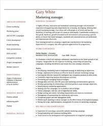 Marketing Professional Resume Doc 525679 Professional Marketing Resume U2013 Click Here To