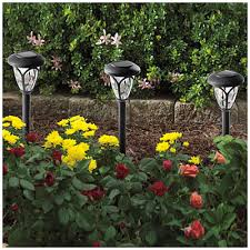 wilson and fisher solar lights 25 10pk wilson fisher solar path light set 10 pack at big