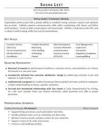 fashion resume examples professionally written entry level resume example great sample professionally written entry level resume example great sample resume