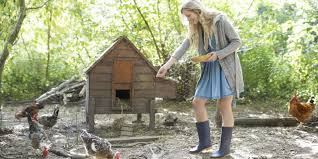 austin backyard chickens the city of austin is now paying people to keep backyard chicken coops