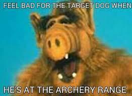 Mega Meme - mega meme every day next meme sloth meme alf pinterest