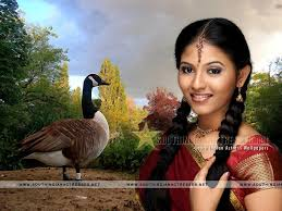 south actress anjali wallpapers wallpapers host2post