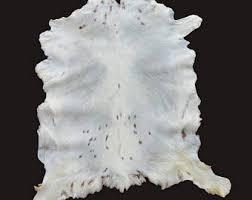 White Skin Rug Hide Rug Etsy