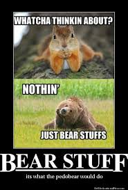 Bear Stuff Meme - bear stuff by fushieho on deviantart