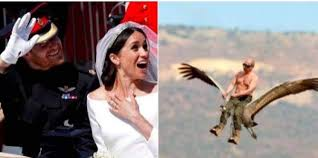 The New Meme - the wedding of prince harry and meghan markle in the new meme and
