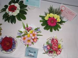 tips for entering shows u2013 with flower arranging in saucers and