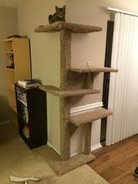 Free Diy Cat Furniture Plans by Cat Tree Design Ideas Simple Diy Cat Furniture Cat Furniture