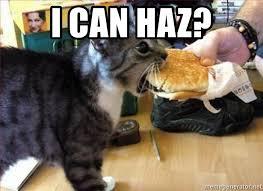 I Can Haz Meme Generator - i can haz cat haz cheezburger meme generator