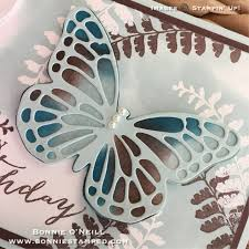 butterfly basics retiring soon bonnie sted