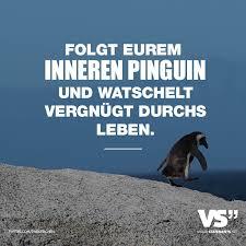 kurze hochzeitssprüche folgt eurem inneren pinguin und watschelt vergnügt durchs leben