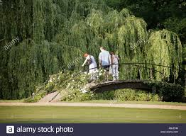 stock photo of an ornamental garden with willow trees stock photo