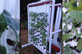 diy indoor vertical farm garden culture magazine