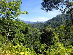 Shoo Rainforest Shop another day another walk costa rica coast to coast trek for