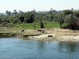Nile River On Map Nile River Egypt Photographs Moses Joseph Free For Use In