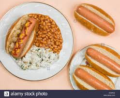 dog in a bun with baked beans and potato salad against a pale