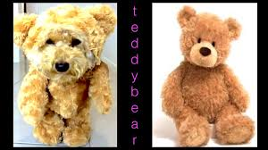 how to make teddy bear dog costume munchkin diy dog craft