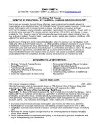 executive resume service director of service delivery resume template want it download it