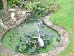 141 best ponds images on pinterest garden ideas pond ideas and