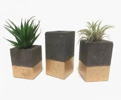 Rectangular Succulent Planter by 32 Uniquely Beautiful Concrete Planters