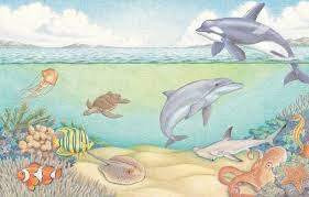 underwater world learn to draw sea creatures book