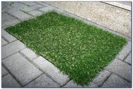 Outdoor Grass Rugs Marvelous Rug That Looks Like Grass Classof Co
