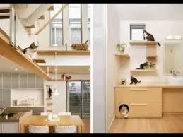 pictures of decorating ideas cat room decorating ideas youtube