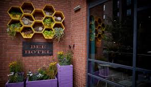 bee happy hotel at jurys inn manchester