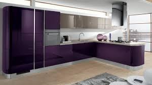 purple kitchens kitchen simple cool purple kitchen design images about purple