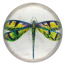 unique dragonfly gifts dragonfly paperweight inspirational dragonfly gifts robyn nola