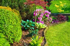 backyard garden images u0026 stock pictures royalty free backyard