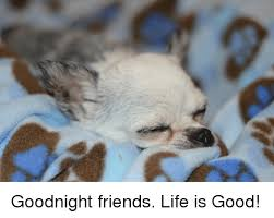 Life Is Good Meme - goodnight friends life is good friends meme on awwmemes com