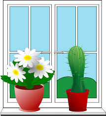 clipart window with potted plants